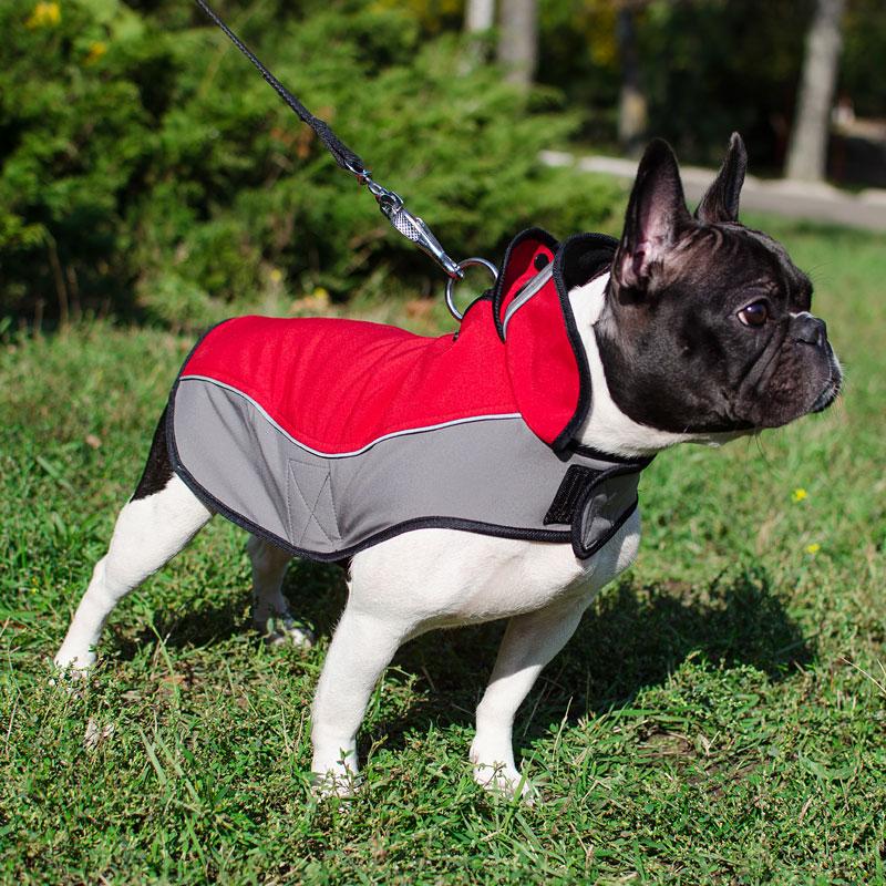 437a4df0185 Arnéses caninos por razas de perro 404 El producto no existe.